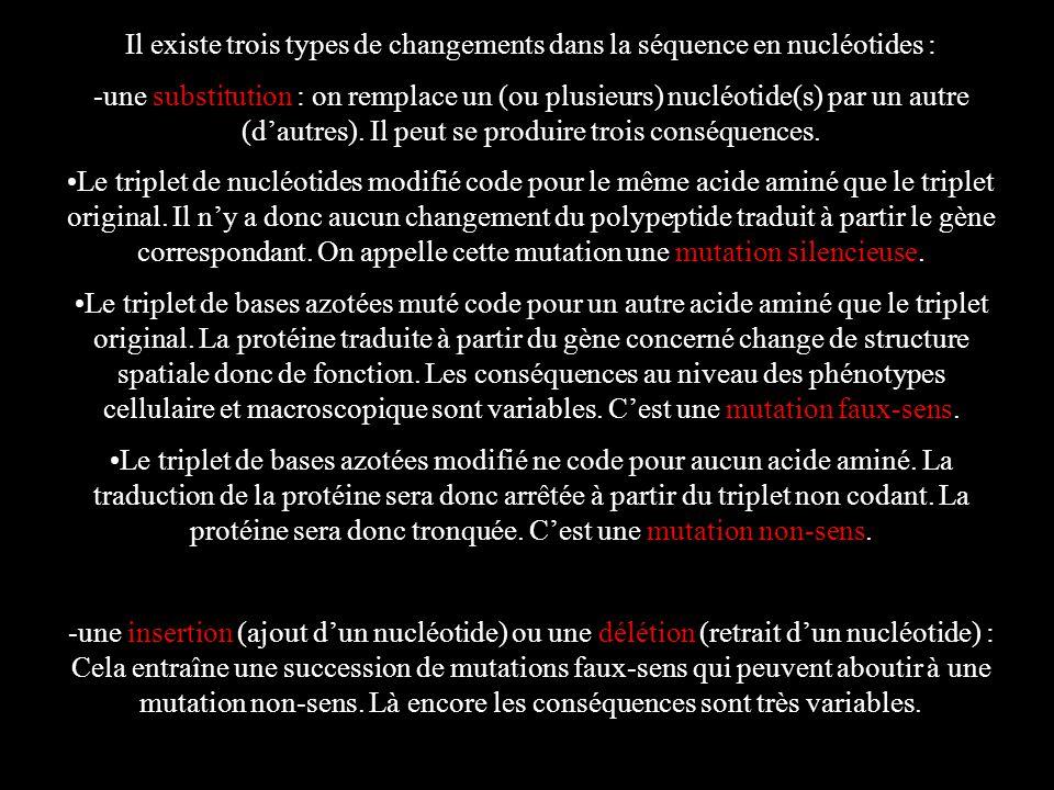 Il existe trois types de changements dans la séquence en nucléotides : -une substitution : on remplace un (ou plusieurs) nucléotide(s) par un autre (d