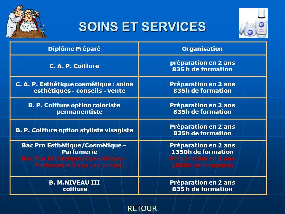 SOINS ET SERVICES Diplôme PréparéOrganisation C.A.