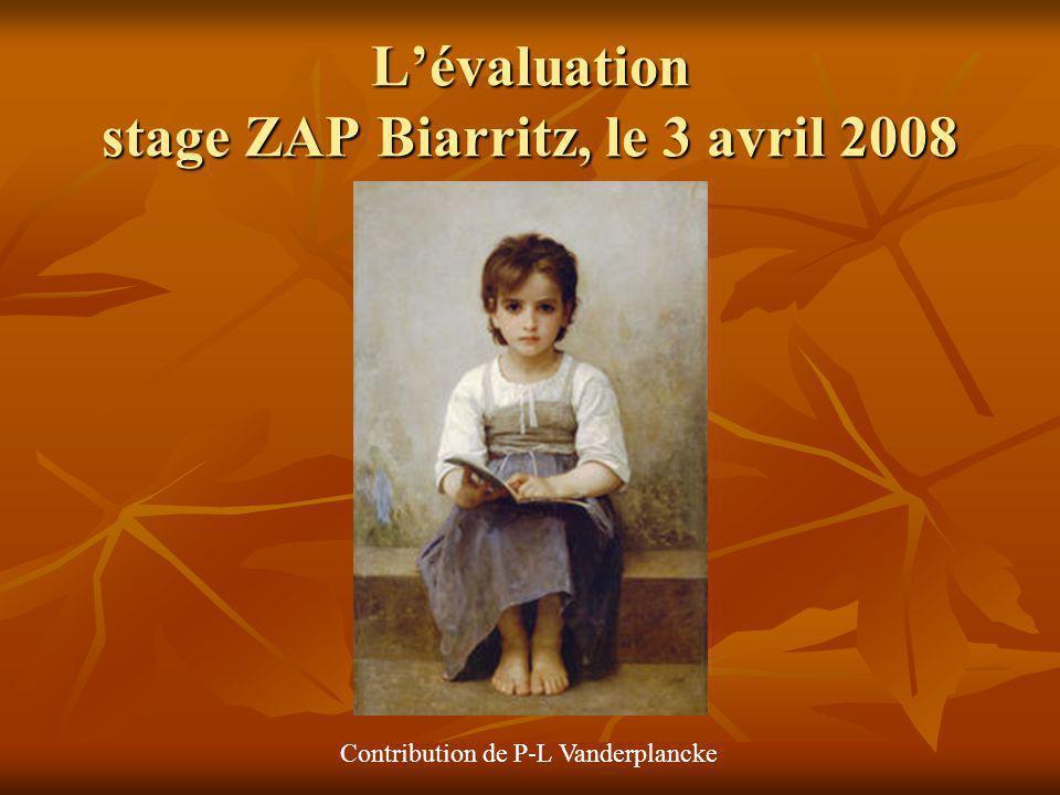 Lévaluation stage ZAP Biarritz, le 3 avril 2008 Contribution de P-L Vanderplancke
