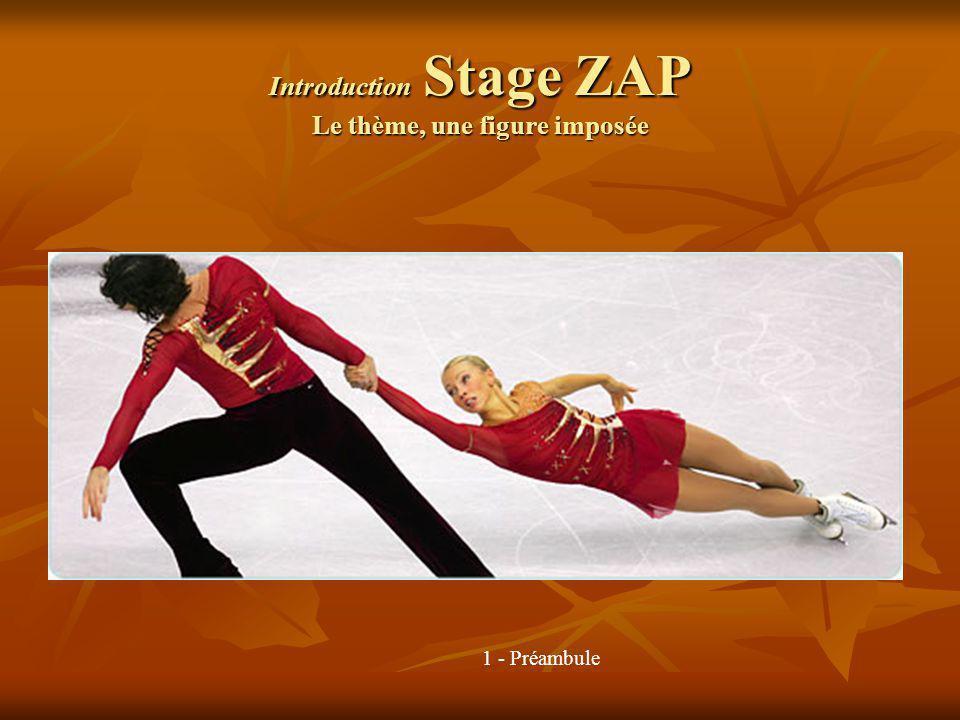 Introduction Stage ZAP Le thème, une figure imposée 1 - Préambule