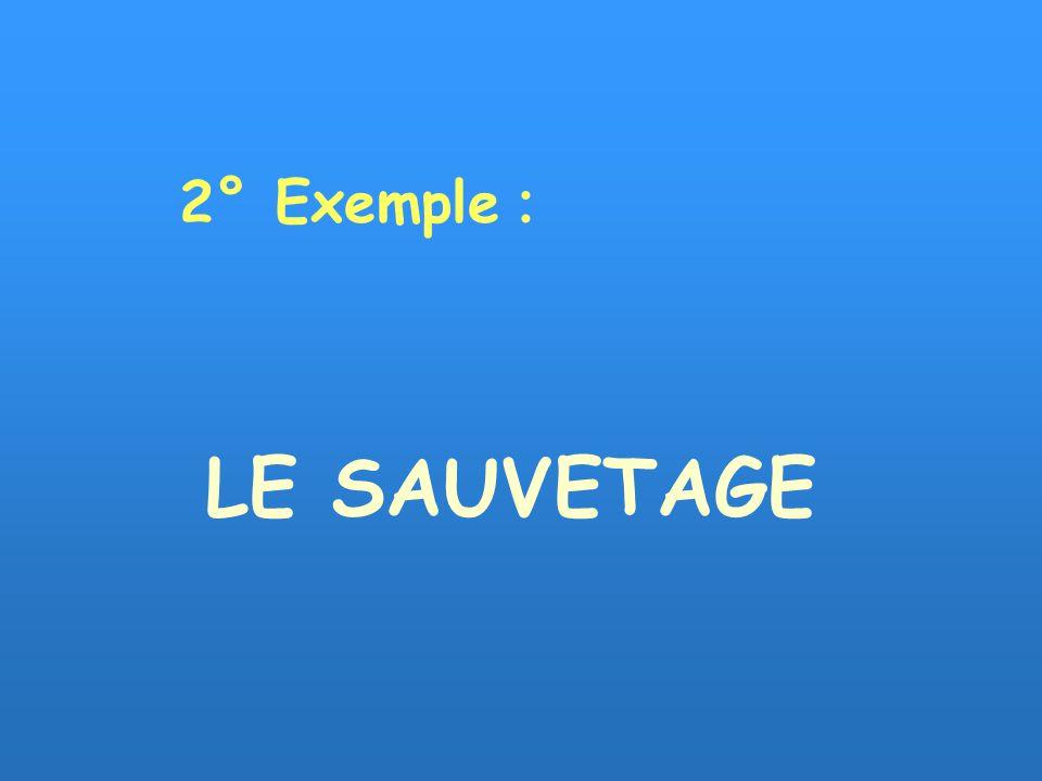 LE SAUVETAGE 2° Exemple :