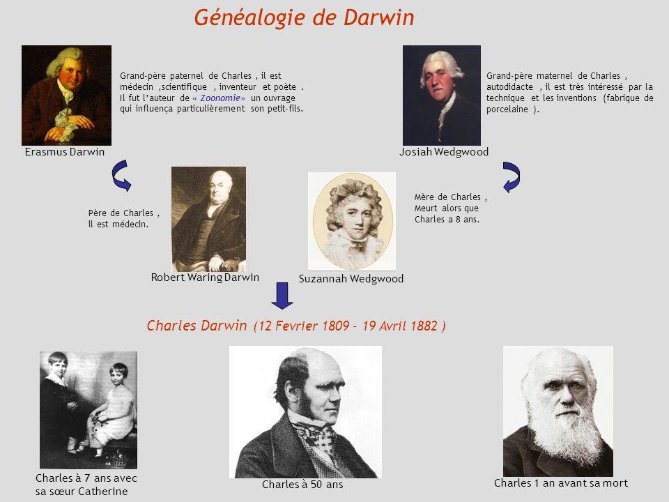 Généalogie de Darwin Erasmus Darwin Grand-père paternel de Charles, il est médecin,scientifique, inventeur et poète. Il fut lauteur de « Zoonomie» un