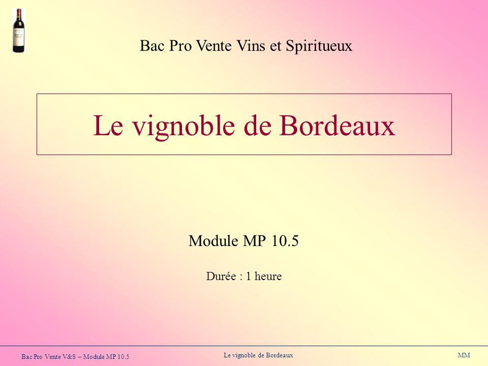 Bac Pro Vente V&S – Module MP 10.5 Le vignoble de Bordeaux MM Le vignoble de Bordeaux Module MP 10.5 Durée : 1 heure Bac Pro Vente Vins et Spiritueux