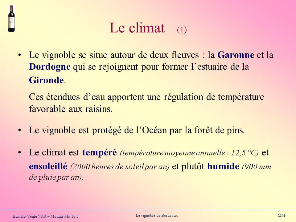 Bac Pro Vente V&S – Module MP 10.5 Le vignoble de Bordeaux MM Le climat (1) Le vignoble se situe autour de deux fleuves : la Garonne et la Dordogne qu