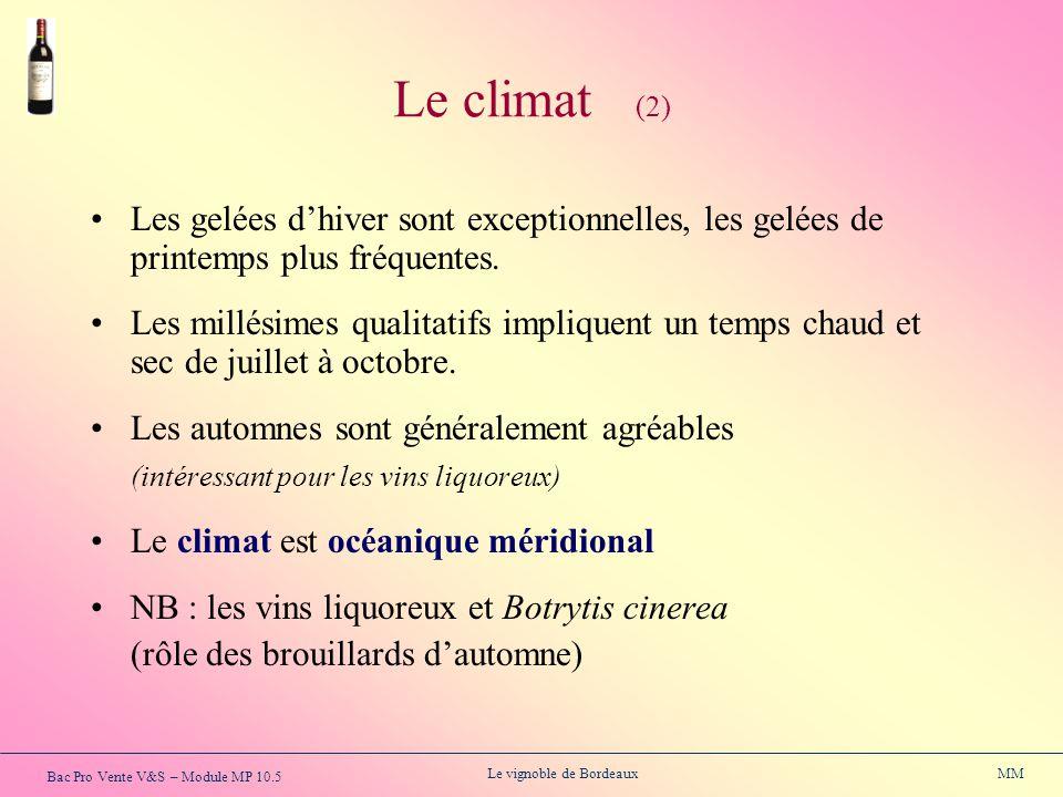 Bac Pro Vente V&S – Module MP 10.5 Le vignoble de Bordeaux MM Les gelées dhiver sont exceptionnelles, les gelées de printemps plus fréquentes. Les mil