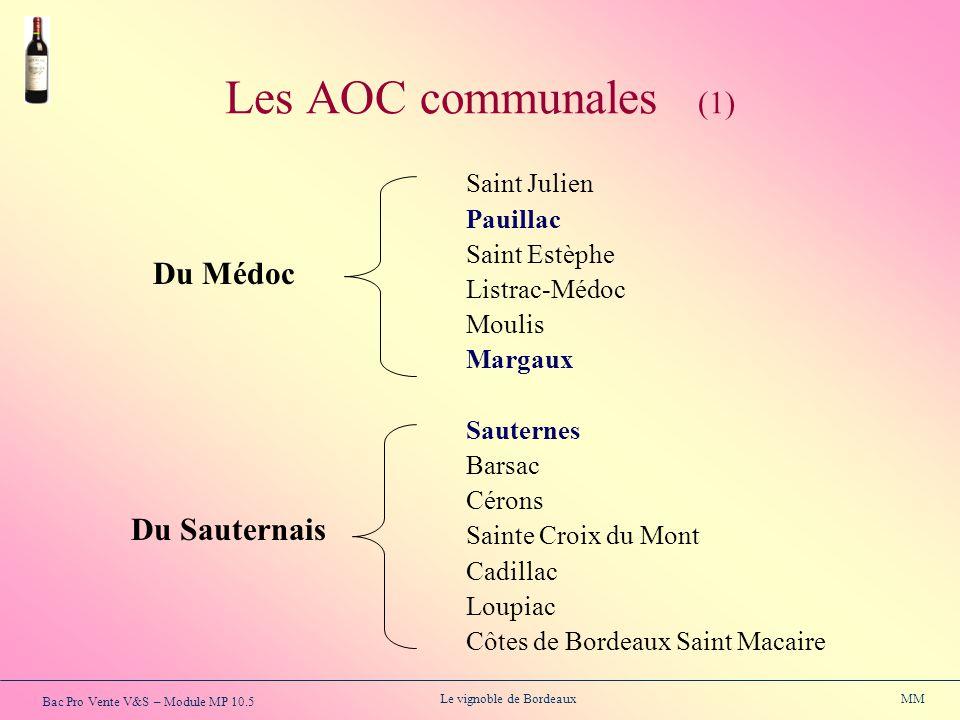 Bac Pro Vente V&S – Module MP 10.5 Le vignoble de Bordeaux MM Les AOC communales (1) Saint Julien Pauillac Saint Estèphe Listrac-Médoc Moulis Margaux
