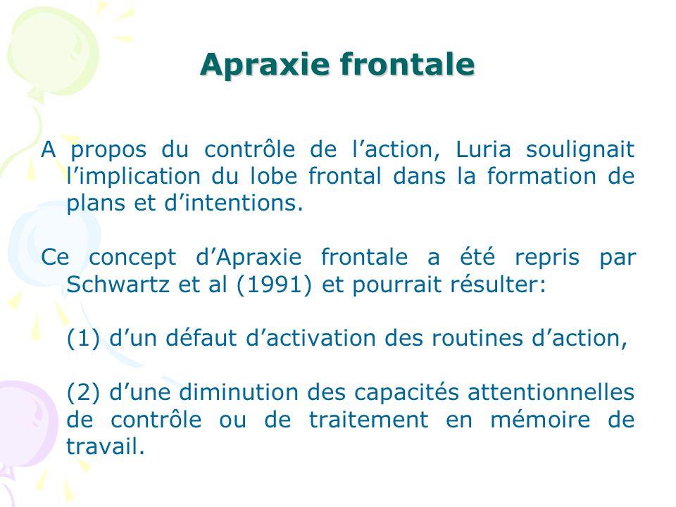 Apraxie frontale A propos du contrôle de laction, Luria soulignait limplication du lobe frontal dans la formation de plans et dintentions. Ce concept