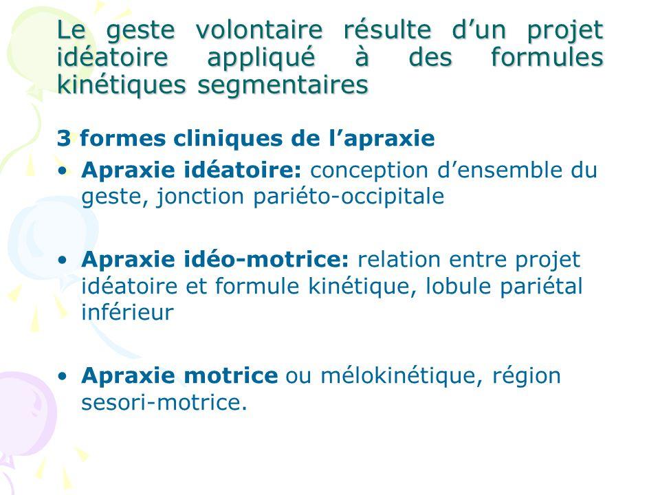 Le geste volontaire résulte dun projet idéatoire appliqué à des formules kinétiques segmentaires 3 formes cliniques de lapraxie Apraxie idéatoire: con