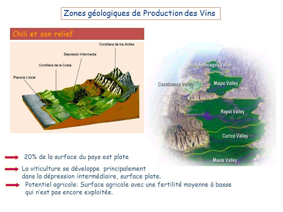 Zones géologiques de Production des Vins Chili et son relief 20% de la surface du pays est plate La viticulture se développe principalement dans la dé