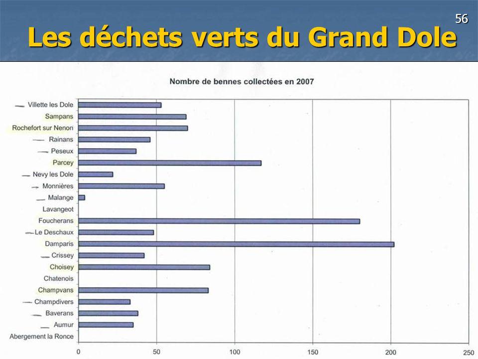 56 Grand Dole-Groupe déchets Pascal Blain 14 Octobre 2008 Les déchets verts du Grand Dole