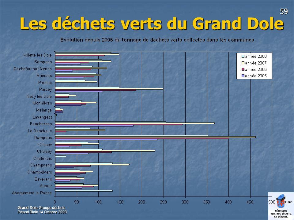 59 Grand Dole-Groupe déchets Pascal Blain 14 Octobre 2008 Les déchets verts du Grand Dole