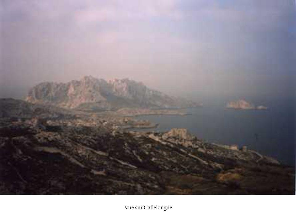 Vue sur Callelongue