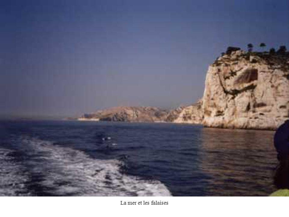 La mer et les falaises