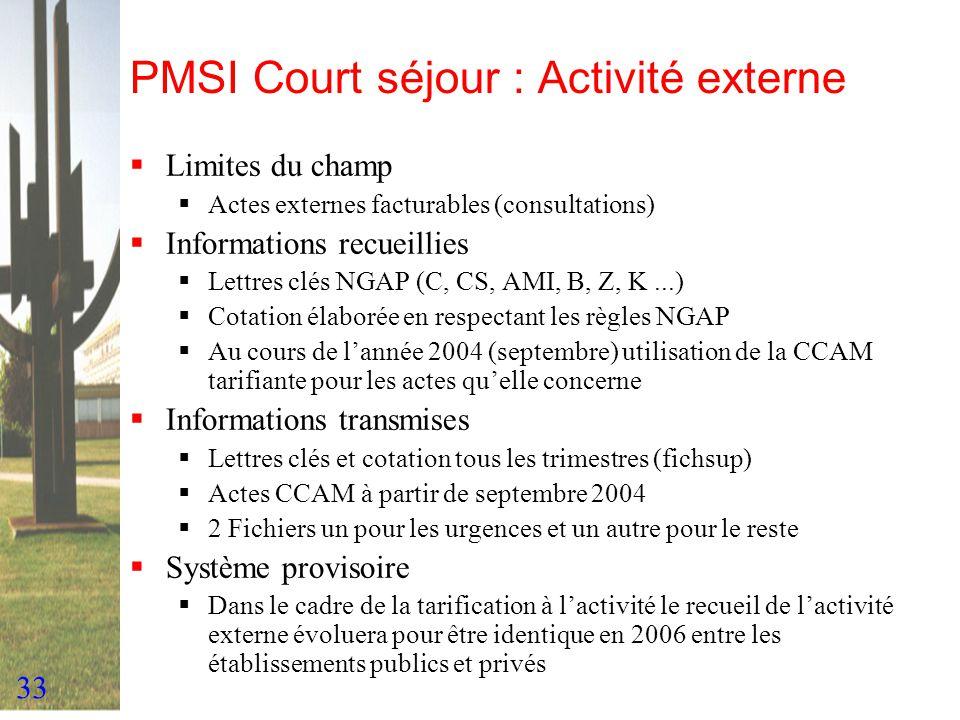 33 PMSI Court séjour : Activité externe Limites du champ Actes externes facturables (consultations) Informations recueillies Lettres clés NGAP (C, CS,
