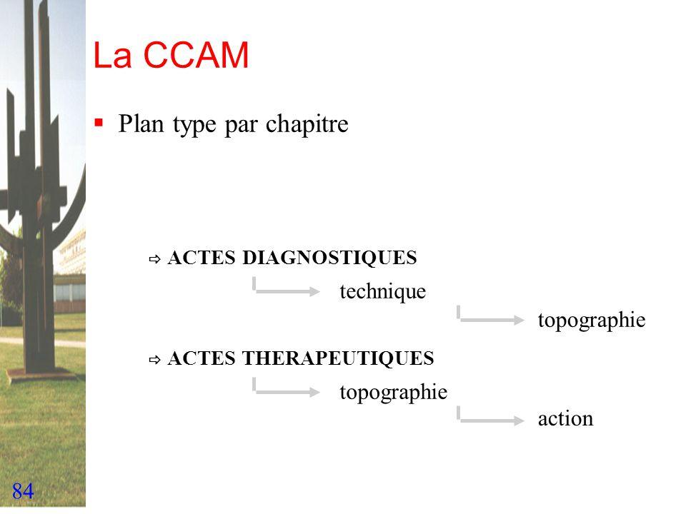 84 La CCAM Plan type par chapitre ACTES DIAGNOSTIQUES ACTES THERAPEUTIQUES technique topographie action