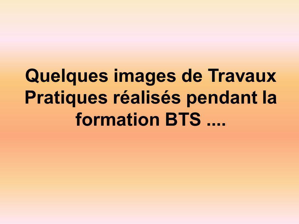 Quelques images de Travaux Pratiques réalisés pendant la formation BTS....