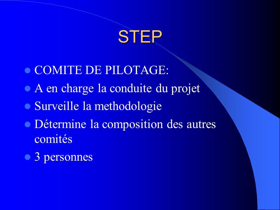 STEP COMITE DE PILOTAGE: A en charge la conduite du projet Surveille la methodologie Détermine la composition des autres comités 3 personnes