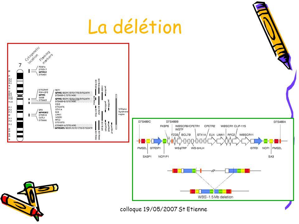 colloque 19/05/2007 St Etienne La délétion