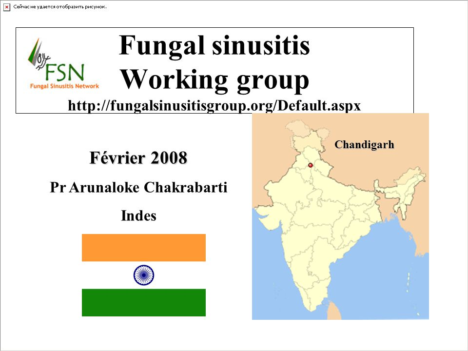 Fungal sinusitis Working group http://fungalsinusitisgroup.org/Default.aspx Chandigarh Février 2008 Pr Arunaloke Chakrabarti Indes