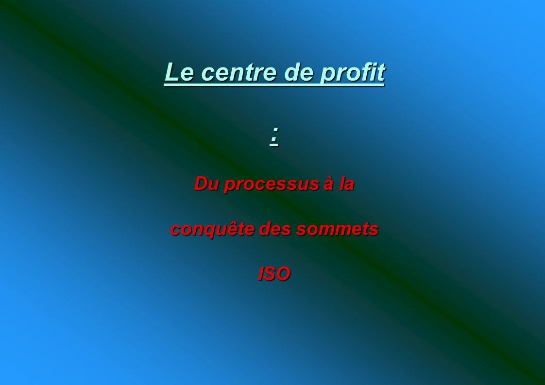 Le centre de profit : Du processus à la conquête des sommets ISO