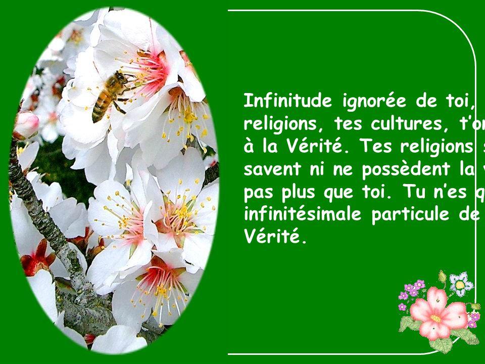 Infinitude ignorée de toi, car tes religions, tes cultures, tont fermé à la Vérité.