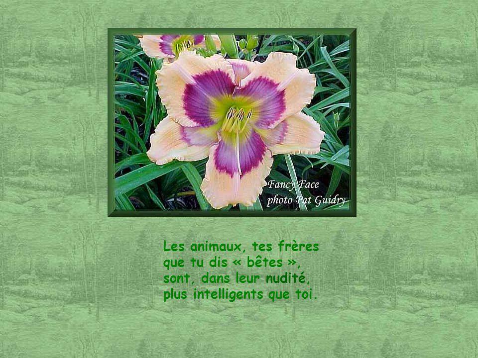 Dans tes actions, tu nas pas dégal pour porter atteinte à ta vie, pour porter atteinte à LA Vie !