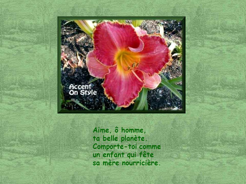 Ce poème a été écrit par Aurélie Connoir, ma jeune amie autiste et trisomique. Il est extrait de son livre « Poèmes d espoir », pour lequel elle vient