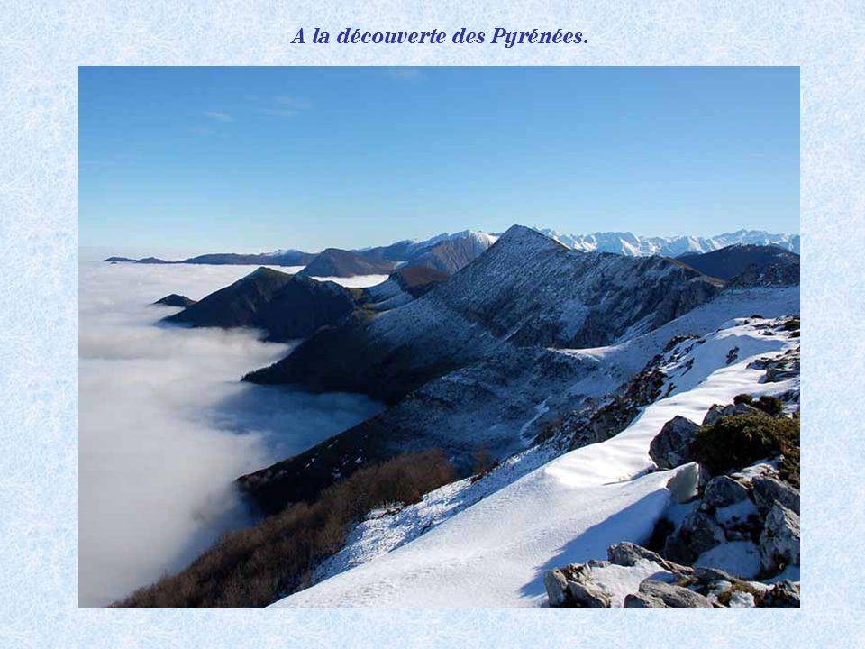 Lever de soleil sur les Pyrénées.