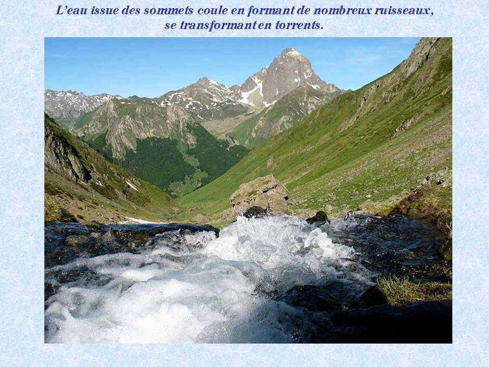 Les Aiguilles dAnsabère (2377m), vallée dAspe. Haut lieu de lescalade dans les Pyrénées.