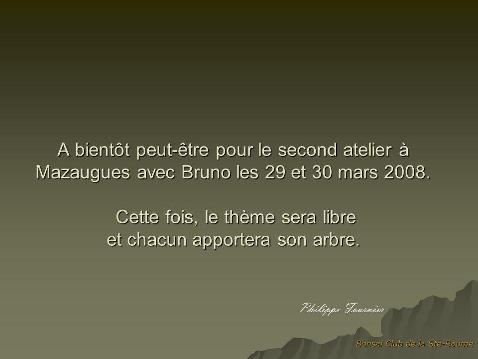 Bonsaï Club de la Ste-Baume A bientôt peut-être pour le second atelier à Mazaugues avec Bruno les 29 et 30 mars 2008.