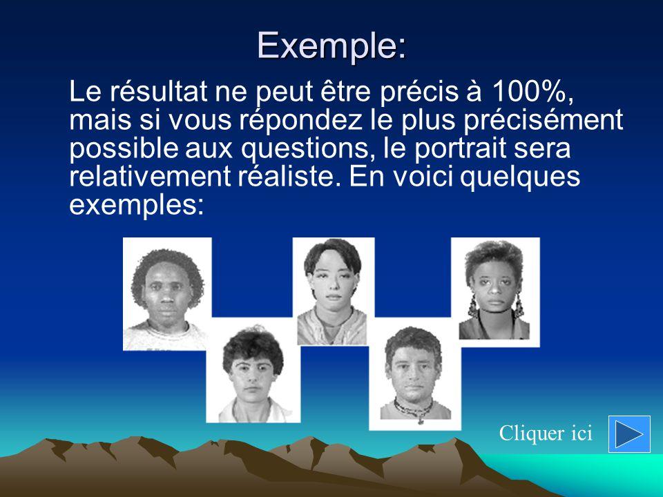 Exemple: Le résultat ne peut être précis à 100%, mais si vous répondez le plus précisément possible aux questions, le portrait sera relativement réaliste.