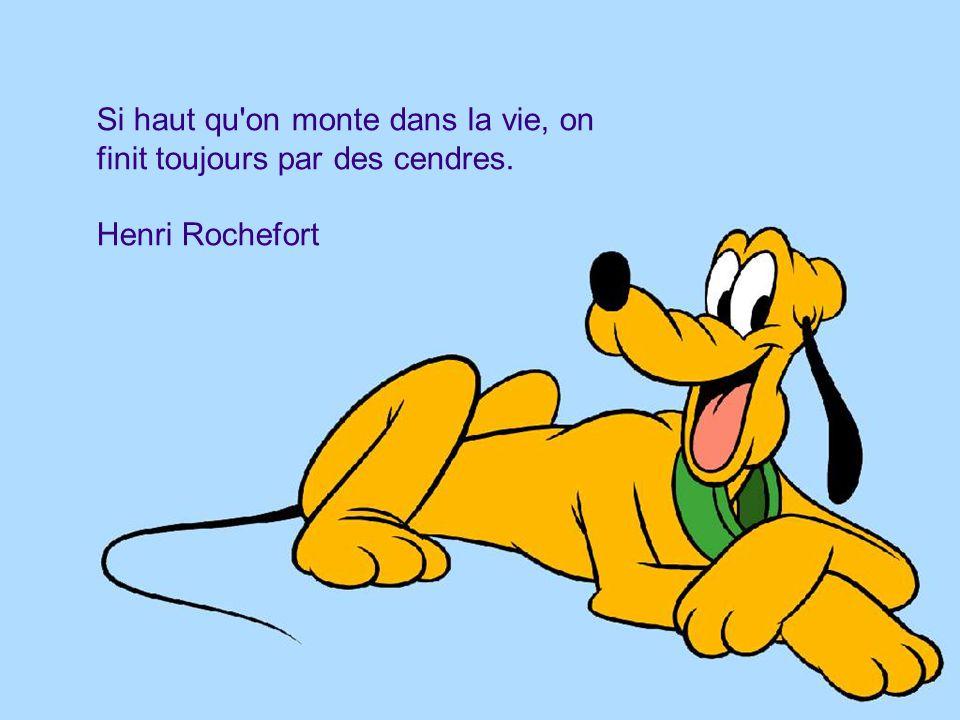 Si haut qu'on monte dans la vie, on finit toujours par des cendres. Henri Rochefort