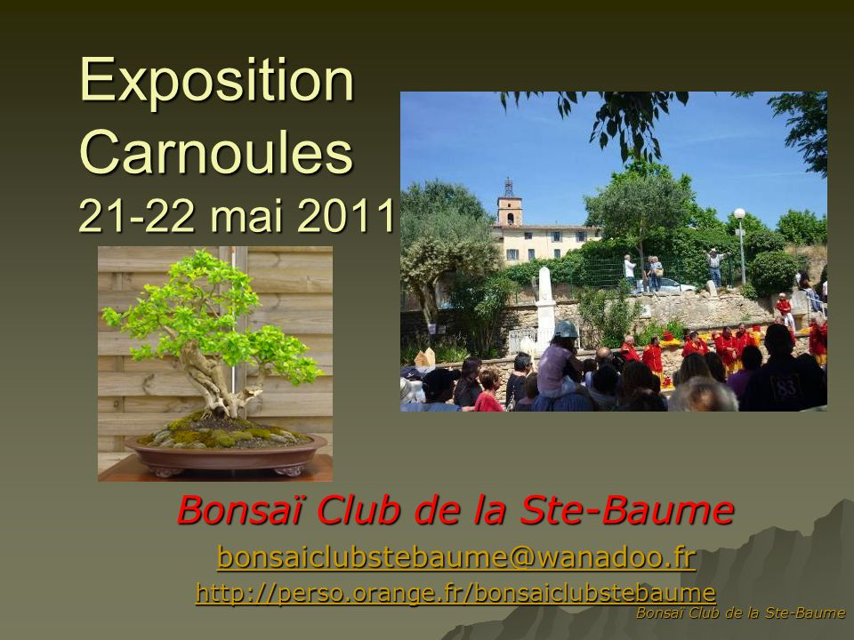 Bonsaï Club de la Ste-Baume bonsaiclubstebaume@wanadoo.fr http://perso.orange.fr/bonsaiclubstebaume Exposition Carnoules 21-22 mai 2011
