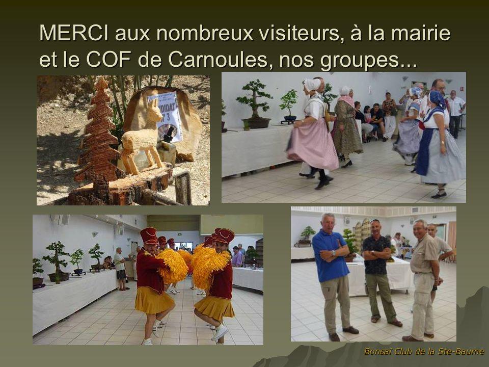 Bonsaï Club de la Ste-Baume MERCI aux nombreux visiteurs, à la mairie et le COF de Carnoules, nos groupes...