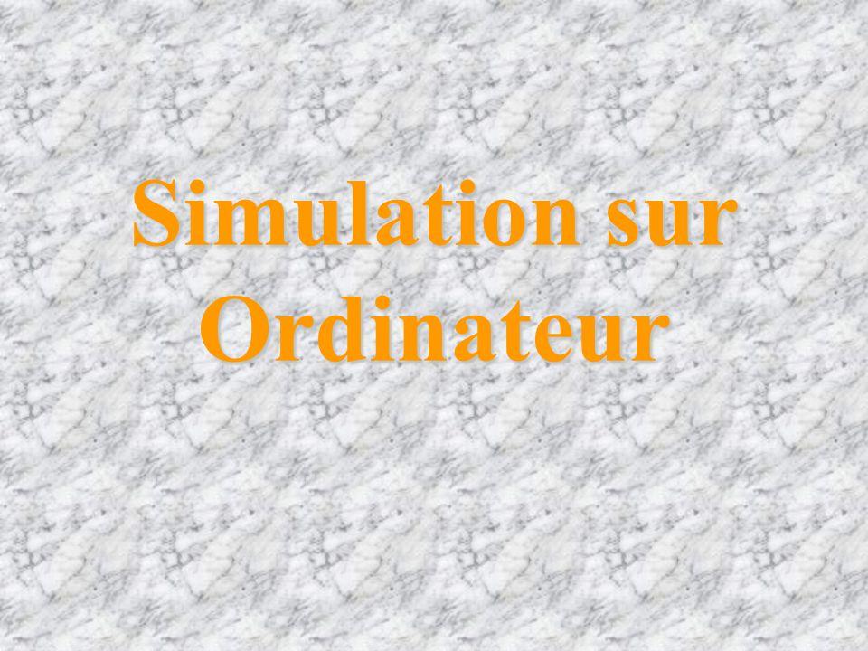 Simulation sur Ordinateur
