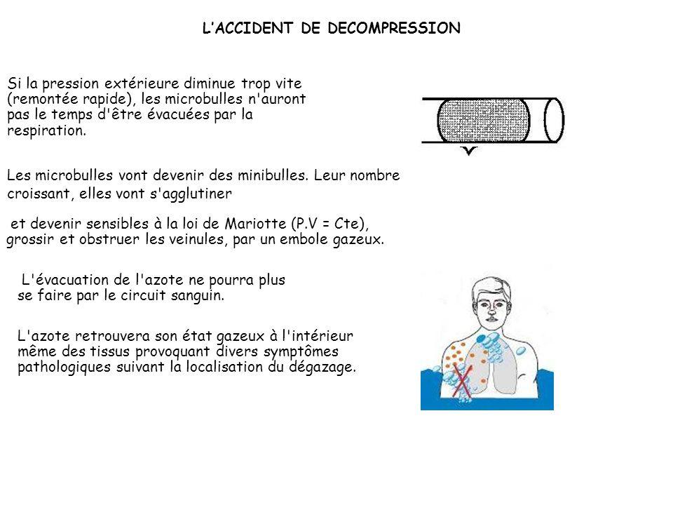 La constitution des veines favorise l'agglomération des molécules gazeuses et provoque la germination de microbulles lors de la décompression. Lorsque