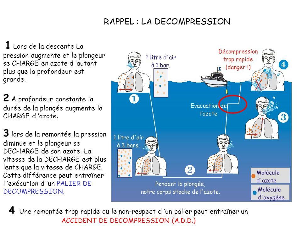 RAPPEL : LA DECOMPRESSION 1 Lors de la descente La pression augmente et le plongeur se CHARGE en azote d autant plus que la profondeur est grande.
