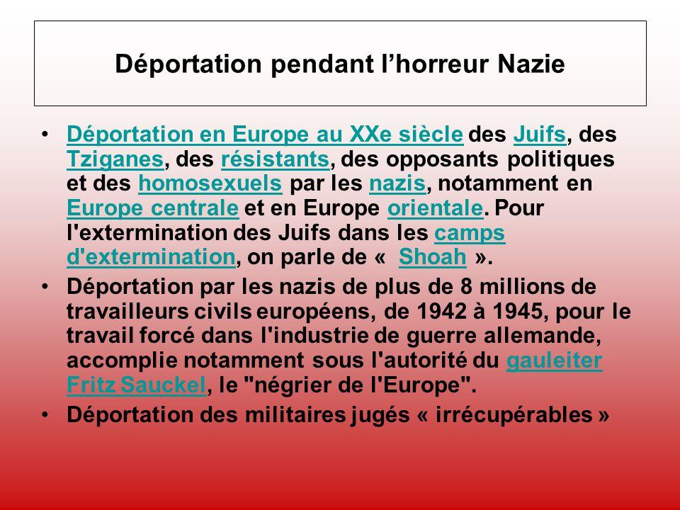 Les chiffres horribles des victimes des nazis par origine de la déportation (1) Racisme et Antisémitisme : –5,5 millions de Juifs considérés par Hitler comme responsables de la guerre –220.000 Tsiganes (race inférieure) soit 1/5 –6 millions de Polonais (sous hommes) soit 1/5 de la population…