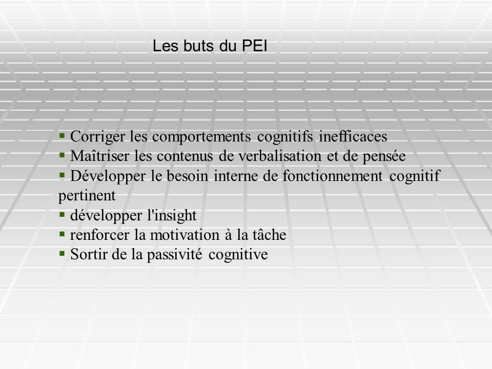 Les buts du PEI Corriger les comportements cognitifs inefficaces Maîtriser les contenus de verbalisation et de pensée Développer le besoin interne de