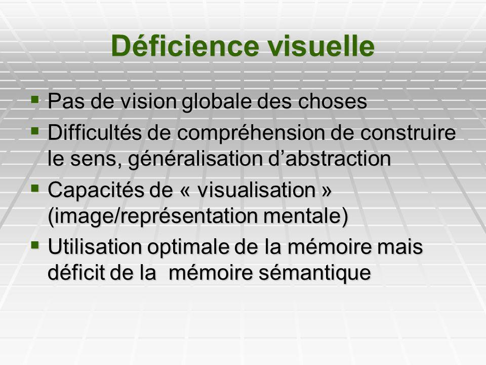 Déficience visuelle Pas de vision globale des choses Pas de vision globale des choses Difficultés de compréhension de construire le sens, généralisati