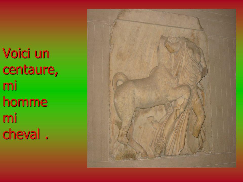 Voici un centaure, mi homme mi cheval.