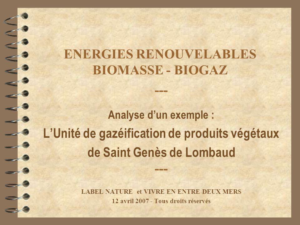 ENERGIES RENOUVELABLES BIOMASSE - BIOGAZ --- Analyse dun exemple : LUnité de gazéification de produits végétaux de Saint Genès de Lombaud --- LABEL NA