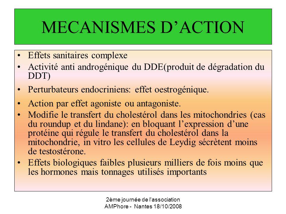 2ème journée de l'association AMPhore - Nantes 18/10/2008 MECANISMES DACTION Effets sanitaires complexe Activité anti androgénique du DDE(produit de d