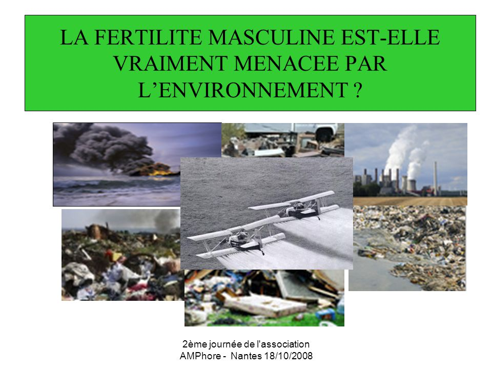 2ème journée de l association AMPhore - Nantes 18/10/2008 Plomb Travailleurs exposés au plomb: Lancranjan (1975) – Cullen (1983) - Cunningham (1986)- Ronis (1998): réduction de la spermatogénèse chez les hommes présentant un taux élevé de plomb dans le sang.