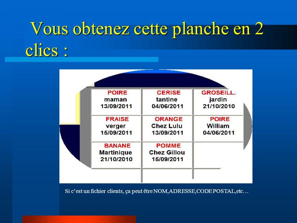 Des planches A4 ou A5 de 1 à 100 étiquettes (8 x 12 ou 10 x 10) Format et dispositions modulables a 100%