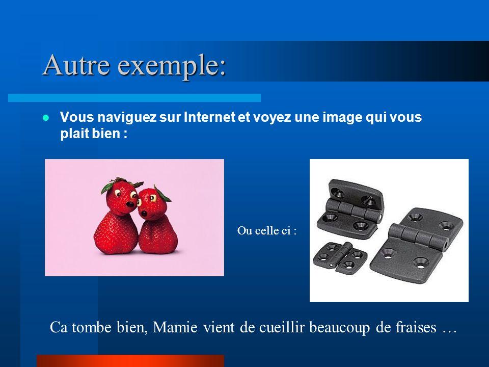 Autre exemple: Vous naviguez sur Internet et voyez une image qui vous plait bien : Ca tombe bien, Mamie vient de cueillir beaucoup de fraises … Ou cel