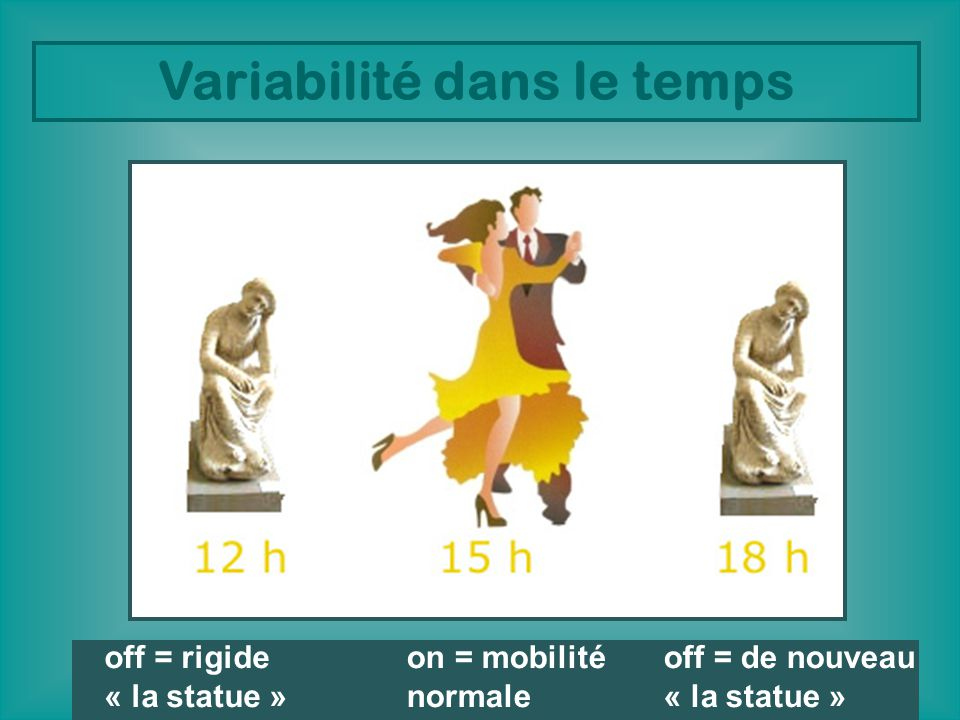 Variabilité dans le temps off = rigide « la statue » on = mobilité normale off = de nouveau « la statue »