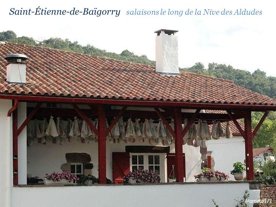Le village Saint-Étienne-de-Baïgorry la rue principale
