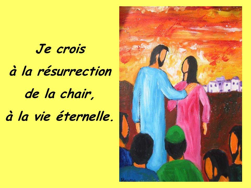 Je crois à la rémission des péchés.