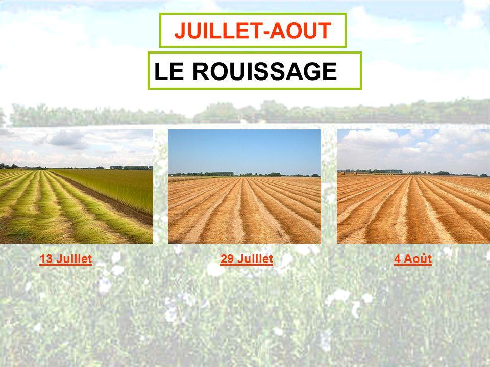 JUILLET-AOUT LE RAMASSAGE ET LE STOCKAGE